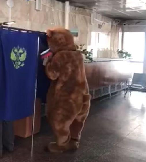 Papa Bear voting.jpg